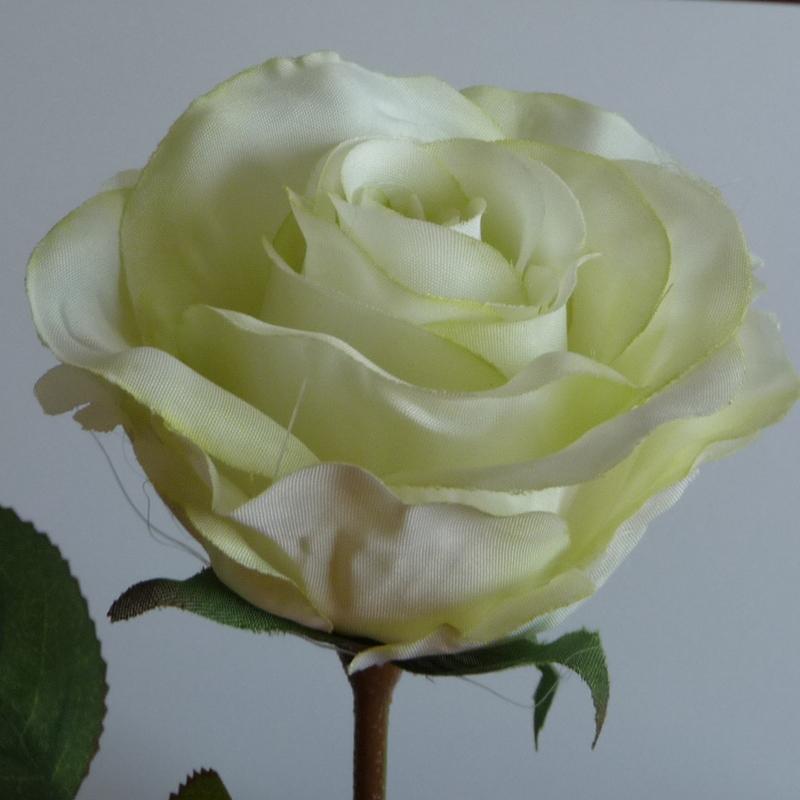 Farben Rose Rosenstiel Einzelblüte halb offen Hochzeit Taufe 40 cm vers